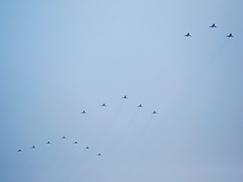 歼击机第二梯队接受检阅[组图]